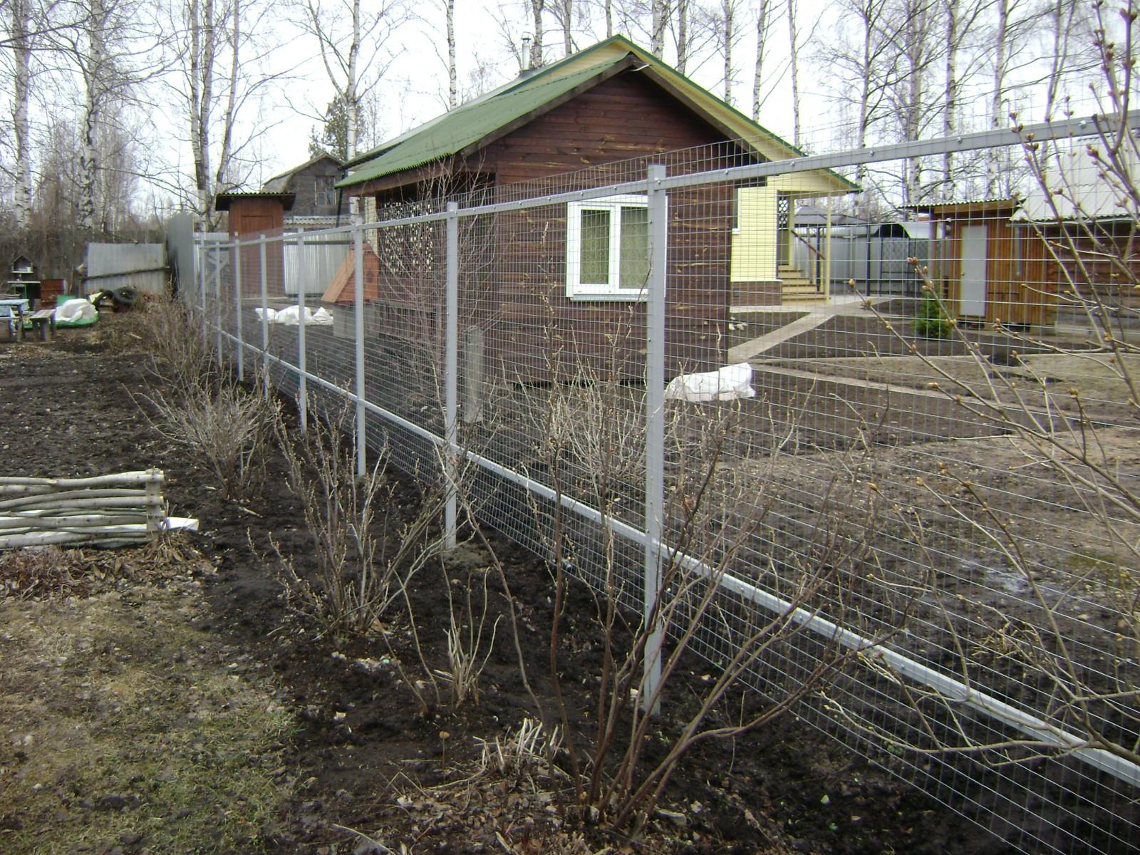Заборы из сварной сетки в Калининграде